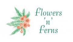 flowersnferns.com